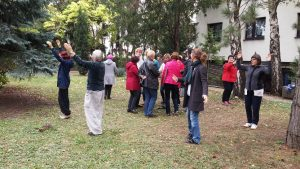 Meditative Kreistänze: Ausbildung Bachblütentänze 2017
